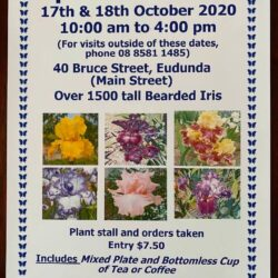 Betty Gray's Tudor Iris Gardens – Open Garden 17th – 18th Oct 2020