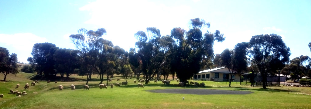 Bistros Girls Hard at work Mowing the Eudunda Golf Club Lawns ready for JAK 2020