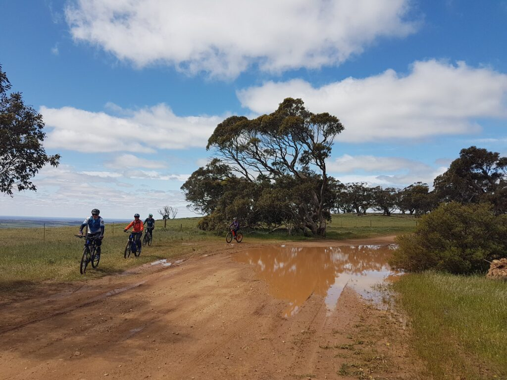 Group of Lavender Cycling Trail (M2C) riders riding around bobby spot on scenic road - photo Helen Dominish