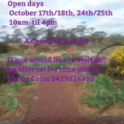 Roots 'N' Leaves SA – Open Iris Gardens – 17-18th & 24-25th Oct 2020