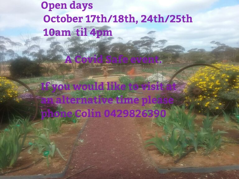 Roots 'N' Leaves SA – Open Iris Gardens – 24-25th Oct 2020