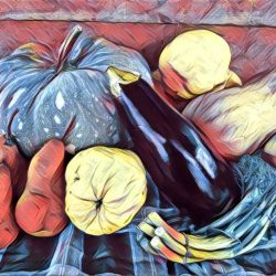Fruit and Vegetable Still Life Workshop To Match Pavilion Theme at this year's Eudunda Show