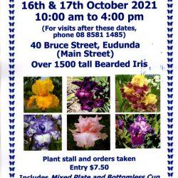 Betty Gray's Tudor Iris Gardens – Open Garden 16th – 17th Oct 2021