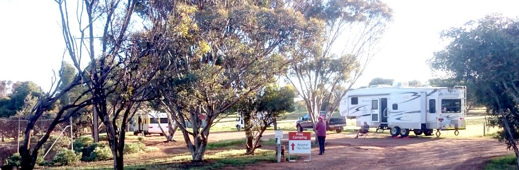 Eudunda Caravan Park 7 of 8 powered sites (plus 5 free campers) - Showing Free Camp area