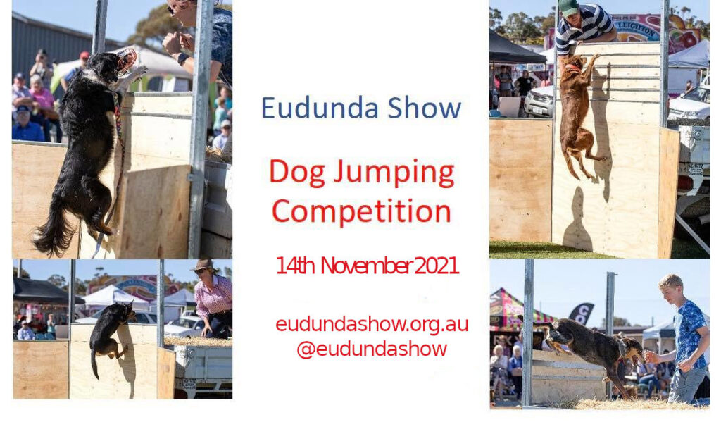 Eudunda Show - Dog Jumping Competition on again this year