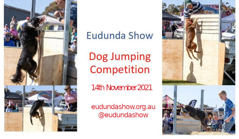 Popular Dog Jumping Competition On Again At The Eudunda Show