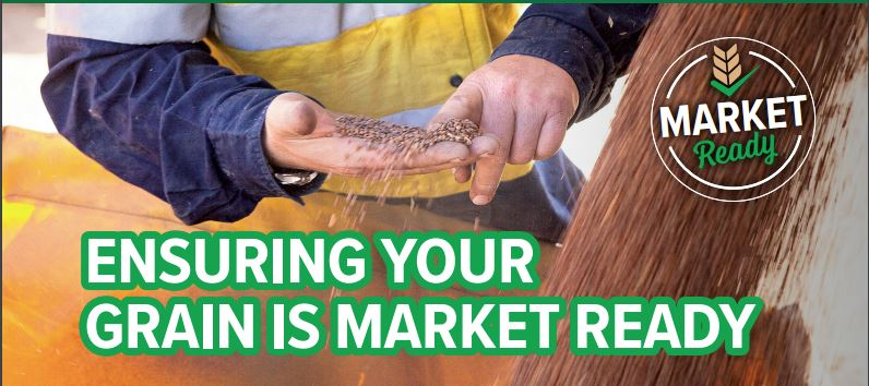 Grain Producers SA - Market Ready Banner