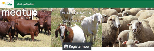 Meatup Forum at Gawler For Red Meat Producers – 5th March 2021
