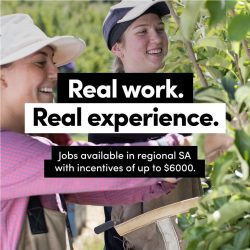 Real Work, Real Experience – Jobs Available In Regional SA With Incentives of up to $6000