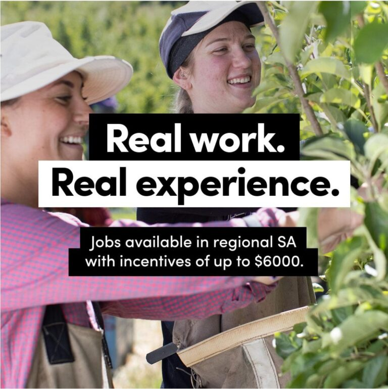 Real Work, Real Experience – Jobs In Regional SA – Incentives of up to $6000