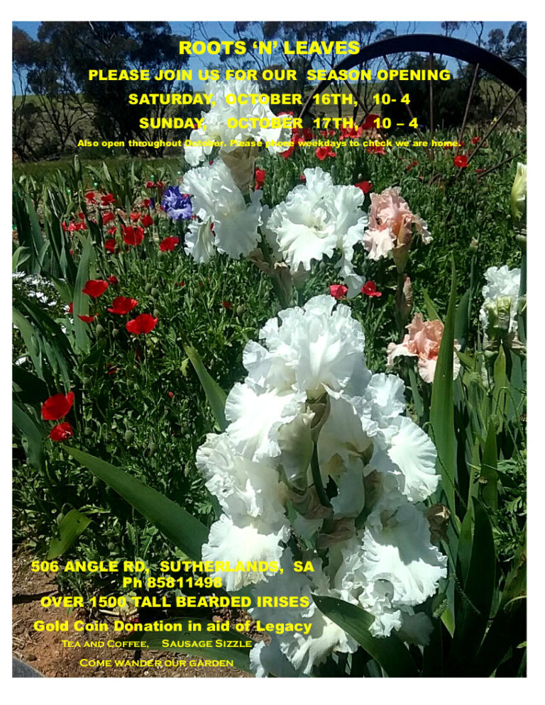 THIS WEEKEND – Roots 'N' Leaves SA – Open Iris Gardens – Sunday 17th Oct 2021